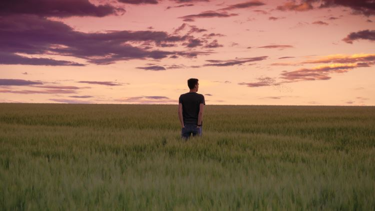 Man standing in a wheatfield at dusk